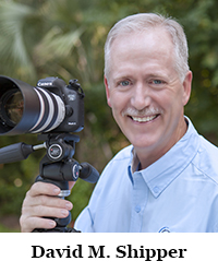 Dave Headshot.jpg