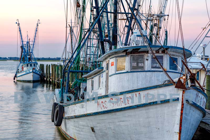 """Lowcountry Lineup"" by David M. Shipper"