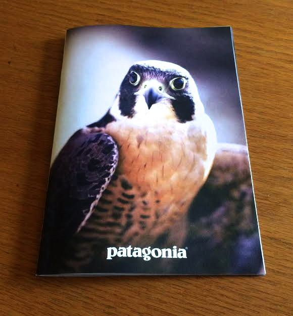 "ORC Education Ambassador, Peregrine Falcon ""Gavin"" on the cover!"