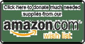 amazonWishListButton-300x156.png