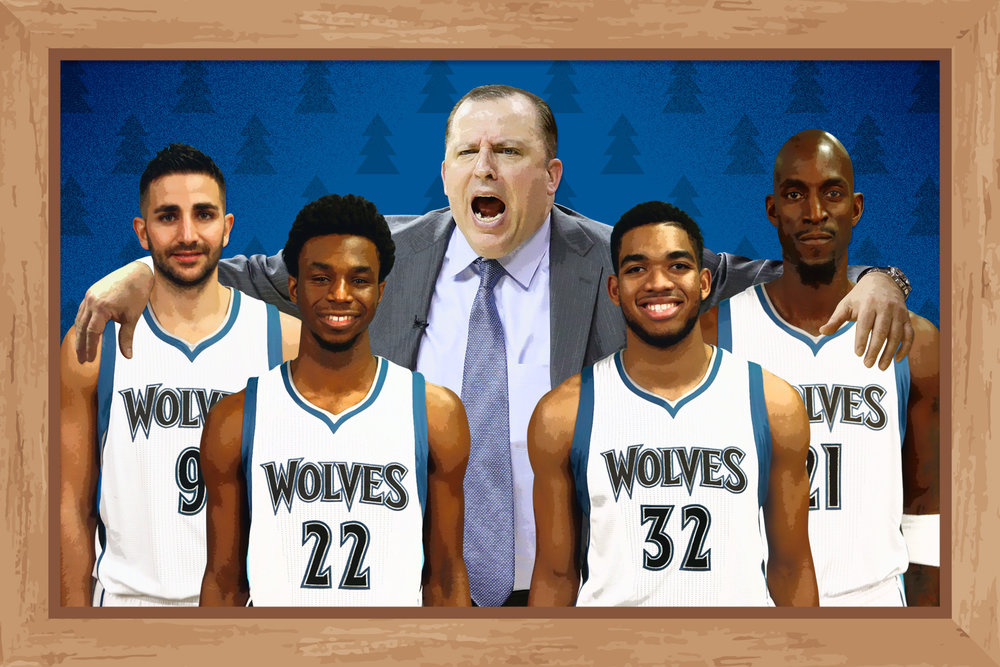 stein-the-ringer-timberwolves.jpg