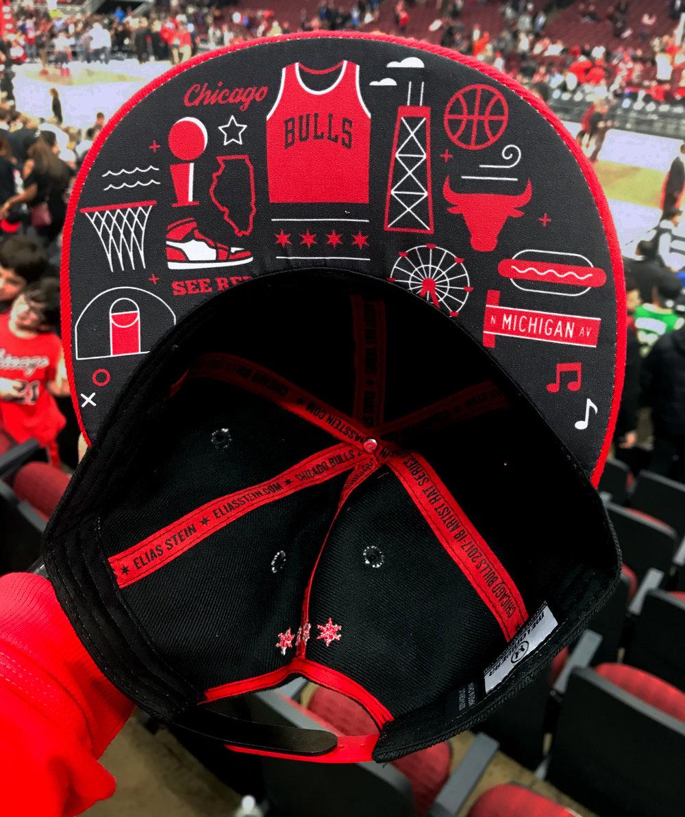 stein-chicago-bulls-hat4.jpg