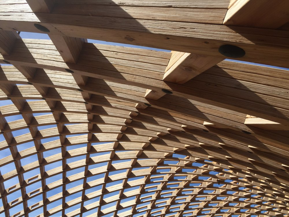 Closeup Gridshell.JPG