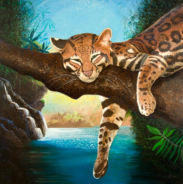 Dream-a-lot Ocelot