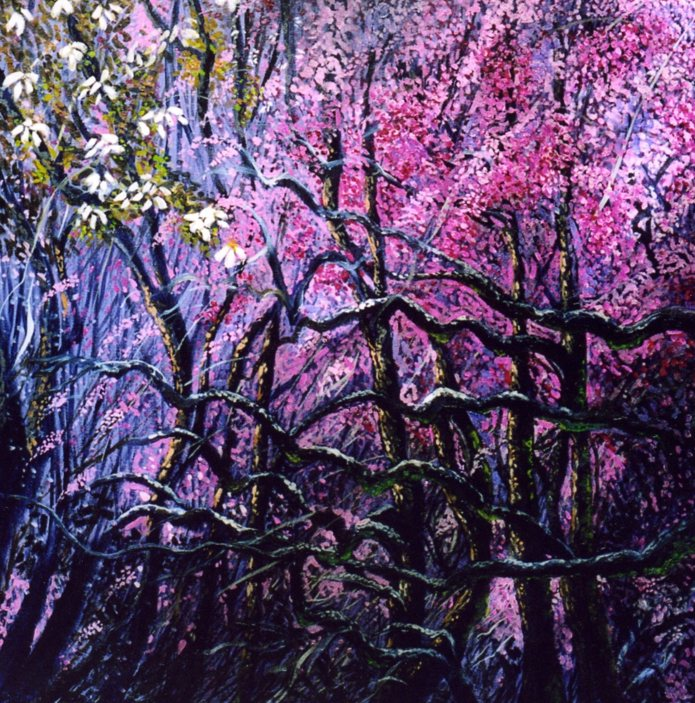 The Pink Tangle Wood