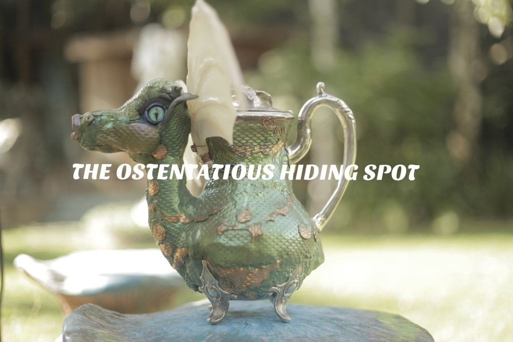 ostentatious hiding spot cover photo.JPG