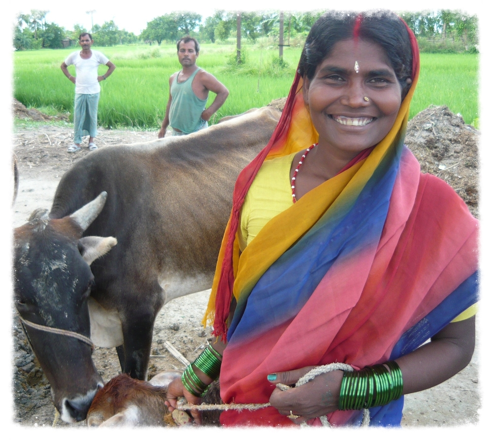 One of the hospital's community health projects are women's Self Help Groups, which empower women to save their own money and use it to start businesses that provide their families with income. Many, like this woman, Geeta, choose to buy cattle.