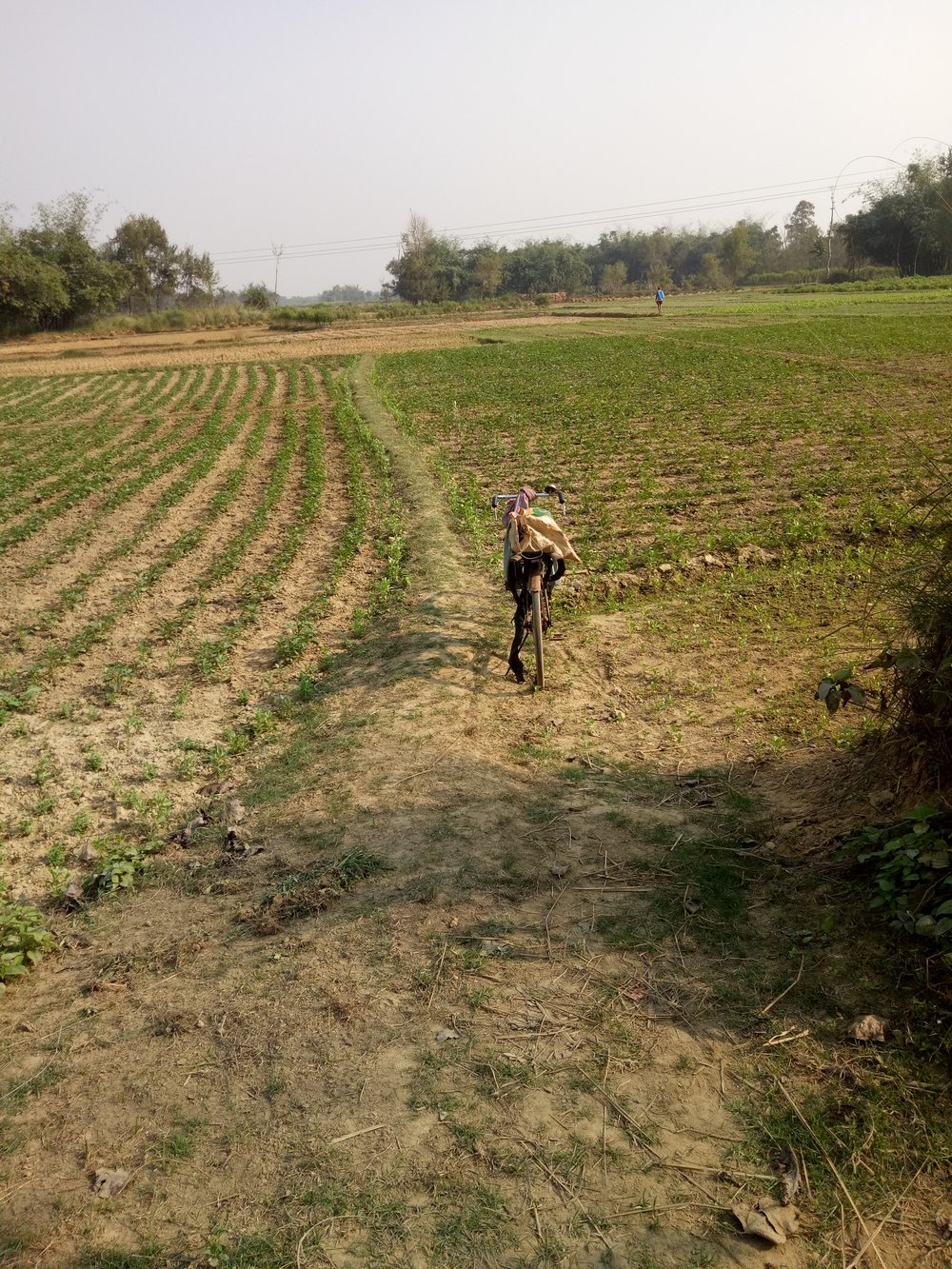 Travel in rural Bihar can be exhausting and tedious. Chetna volunteers like Saroj spend much of their time traveling by bicycle or motorbike to different sites or villages - Photo by Sarah K.