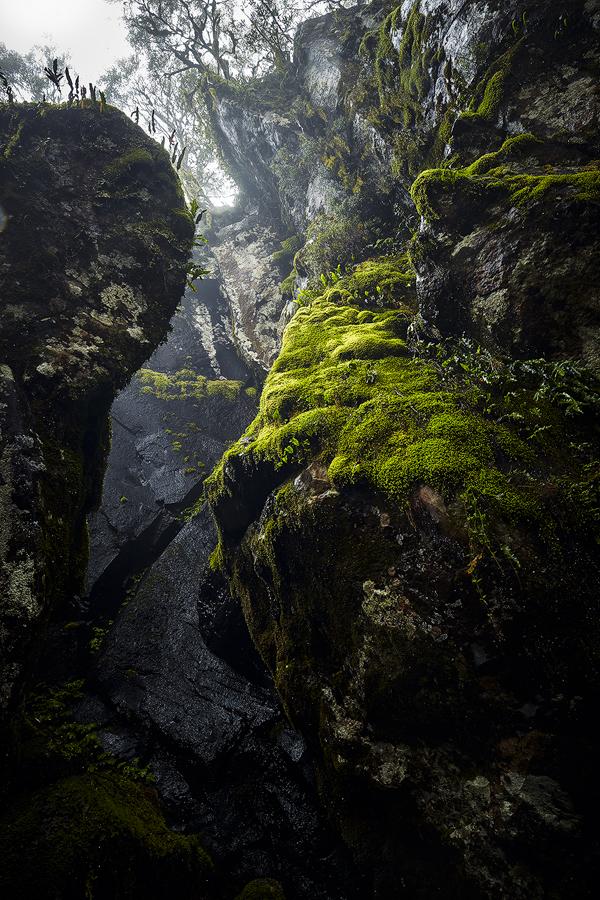 new-england-national-park.jpg