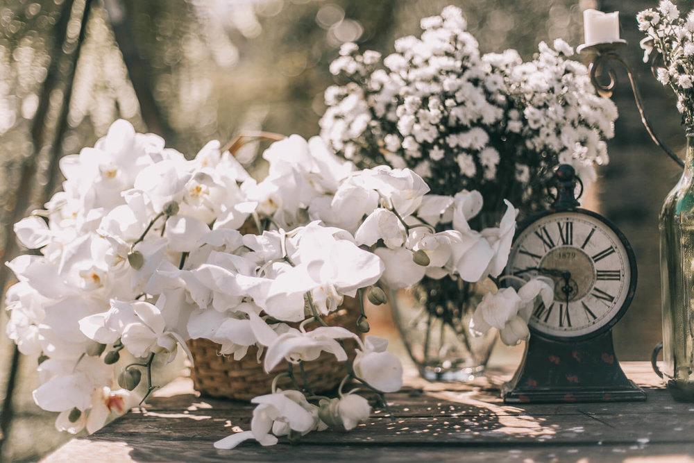 fotografo-casamento-curitiba