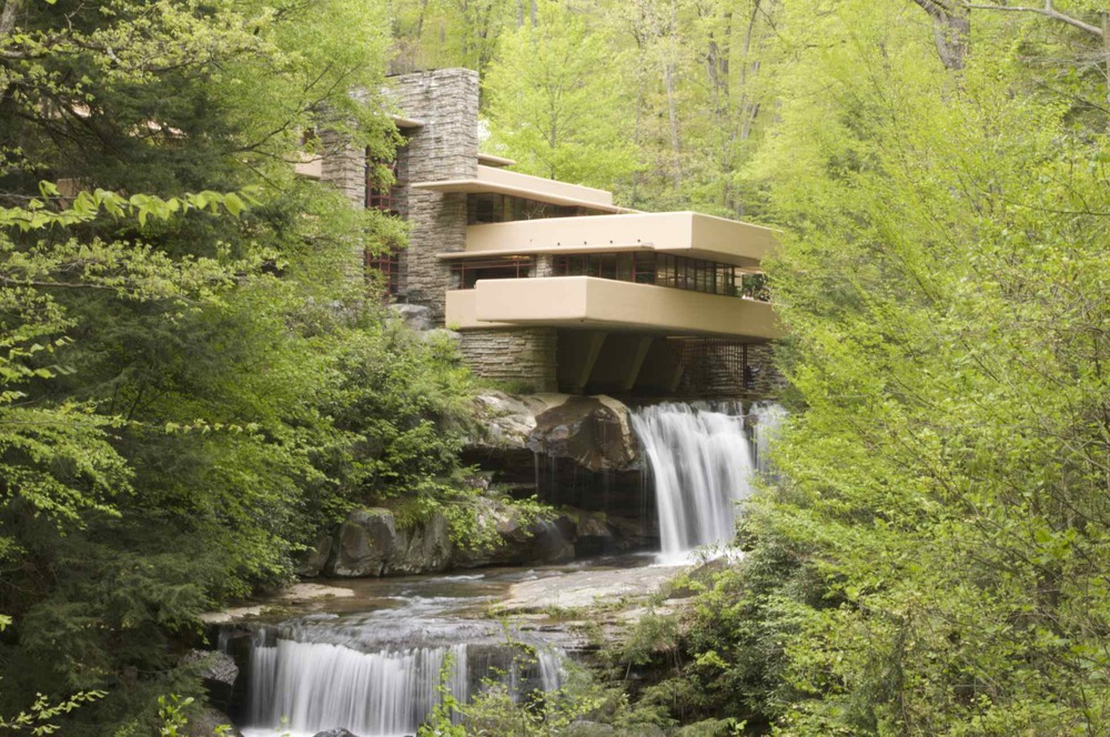 Fallingwater: The View
