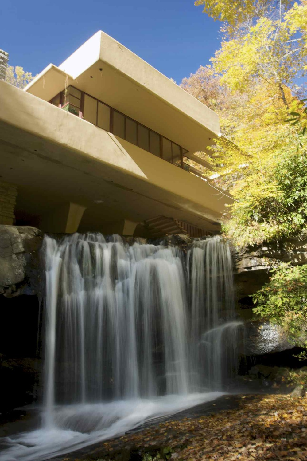 Fallingwater: Bear Run Stream