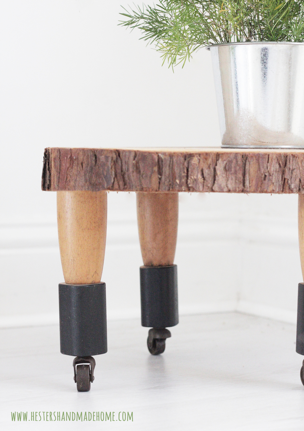 tree slice table hester