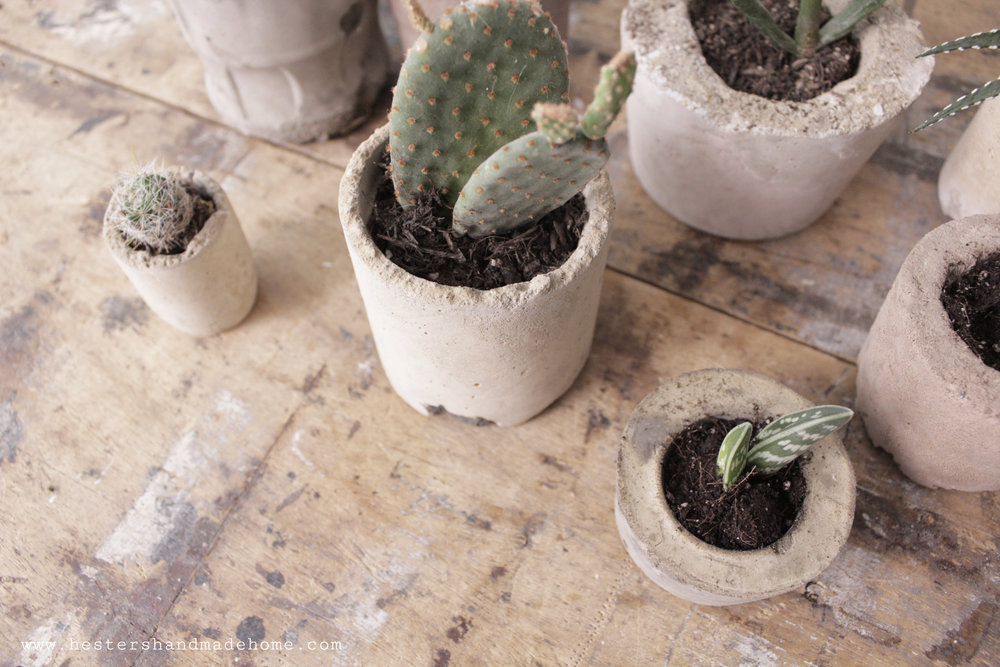 Succulent planter tutorial by www.hestershandmadehome.com