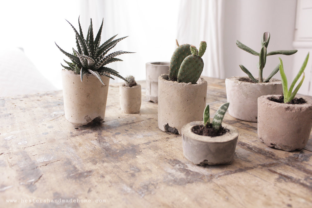Concrete planters from the www.hestershandmadehome.com