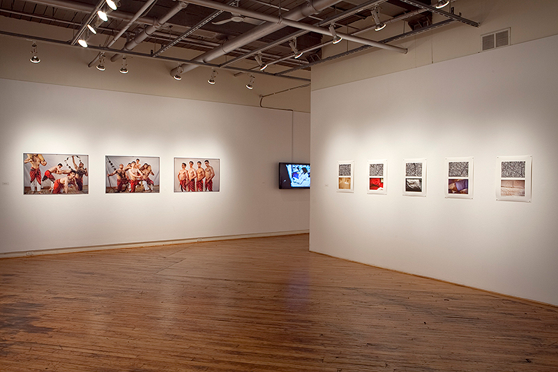 Fitzpatrick-Gallery-44-show-Gender-and-Exposure-detail-3,-2012.jpg