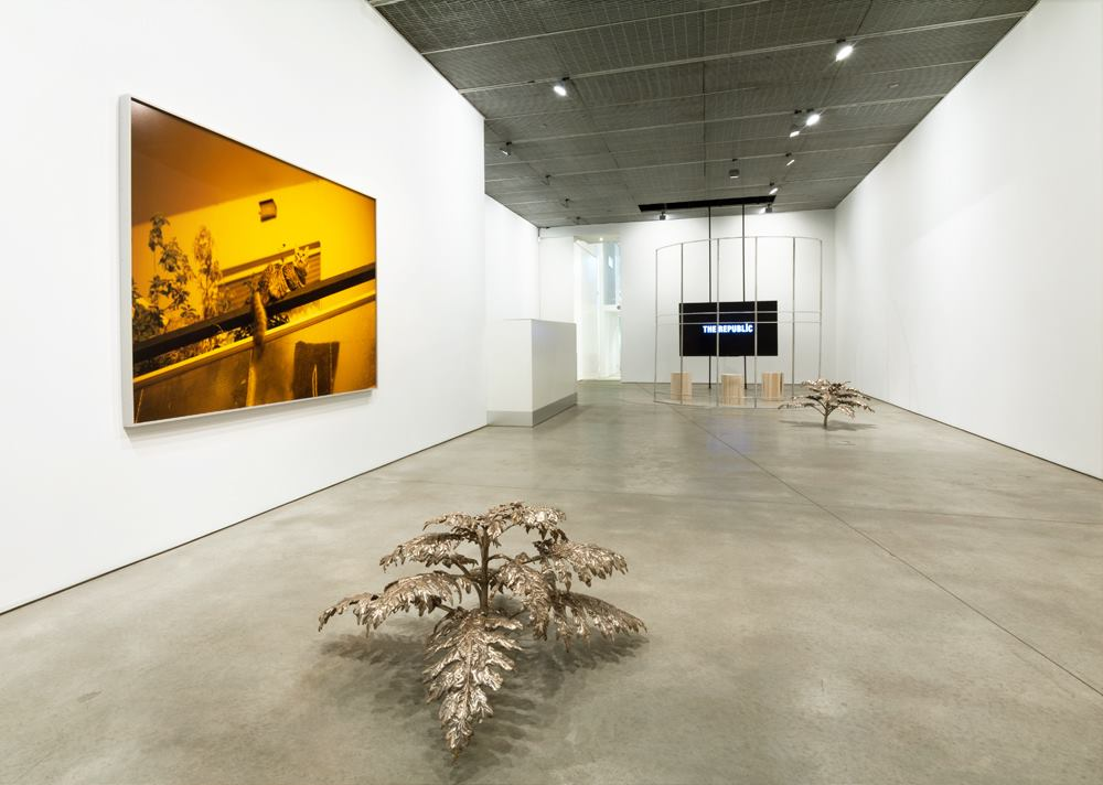 David Hartt, The Republic I , Fragment and The Republic. Image courtesy of David Nolan Gallery, New York