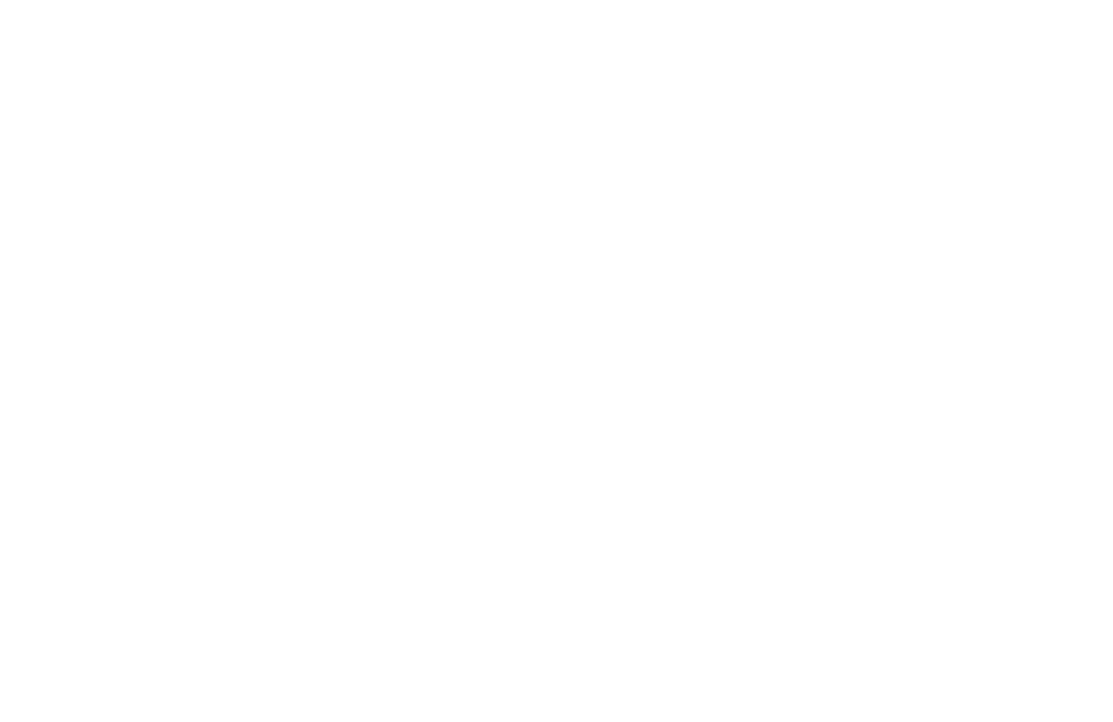 MSS_icon_white.png
