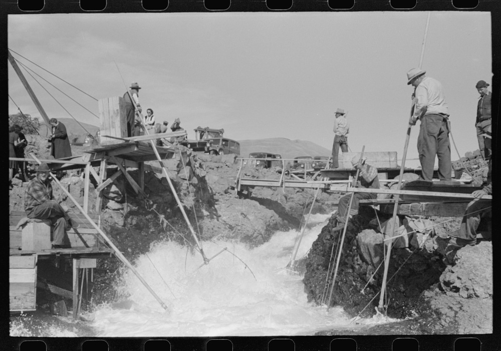 Indians fishing for salmon, Celilo Falls, Oregon