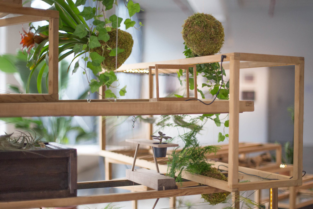 Plant in City on display at  Wanted Design Brooklyn 2015 .