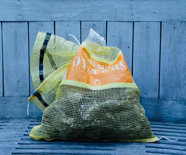 oyster-bag.jpg