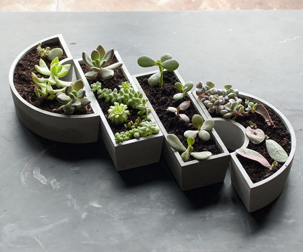 harold-harold-planters.jpg