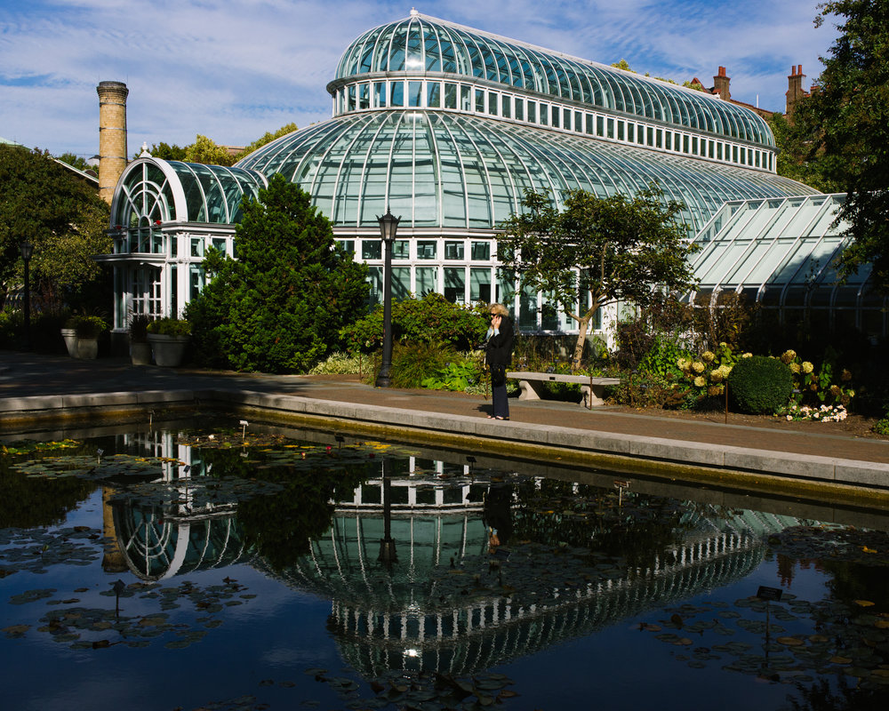 brooklyn-botanic-2708.jpg