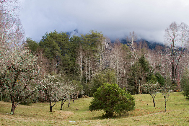 Many of these territories are owned by Mapuche tribes, they charge entry fees as a way to sustain themselves.