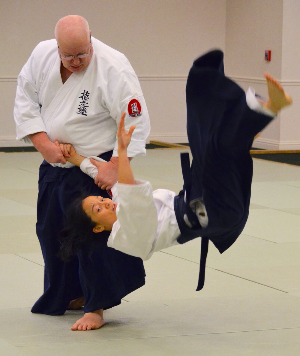 Nashville Martial Arts Classes Aikido Training.jpg