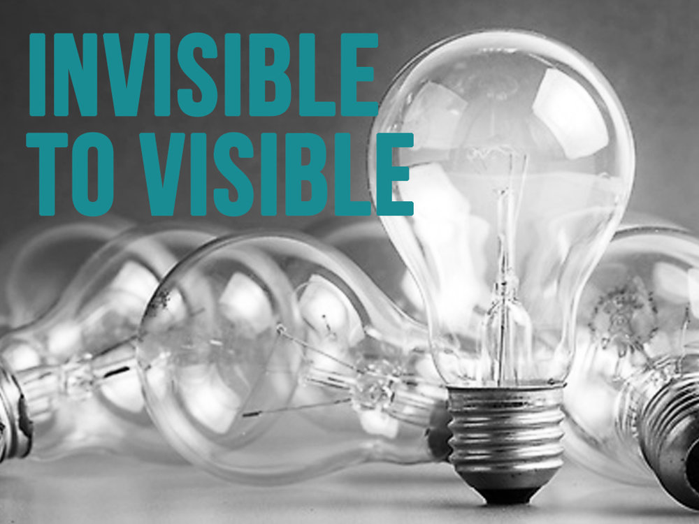 Invisible to Visible Graphic.jpg