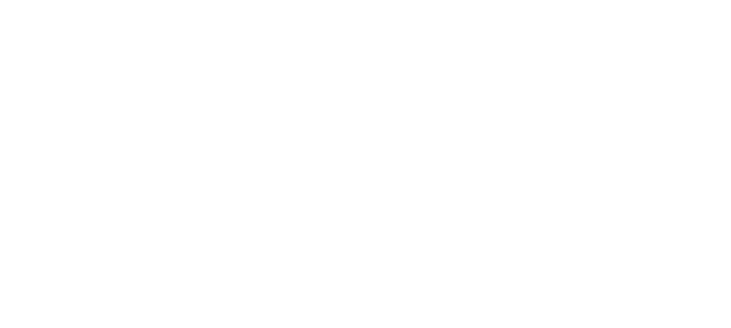 The Plains Service Center