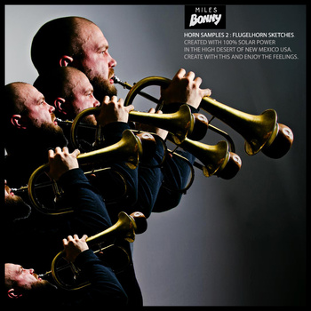 Miles Bonny-Horn Samples 2 : Flugelhorn Sketches