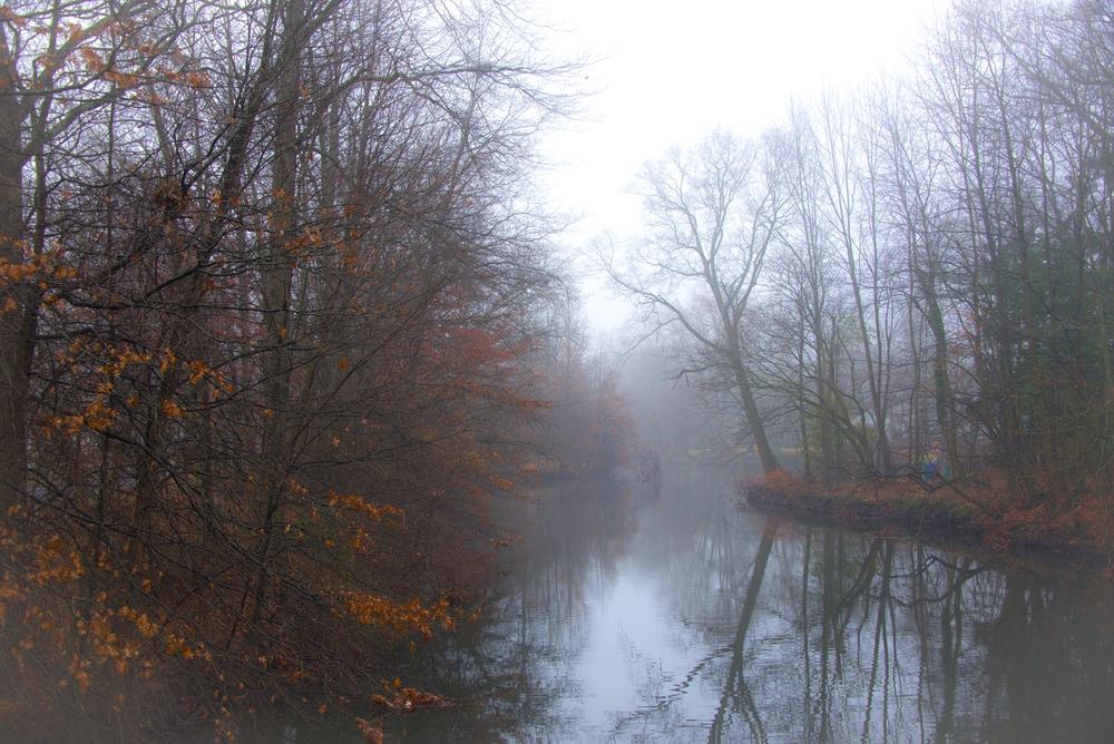 Nature-066.jpg