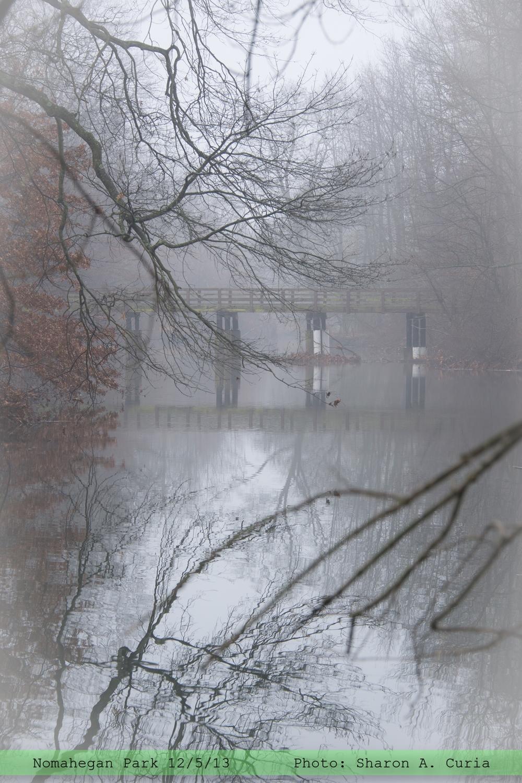 Nomahegan Fog 015 (Sheet 15).jpg