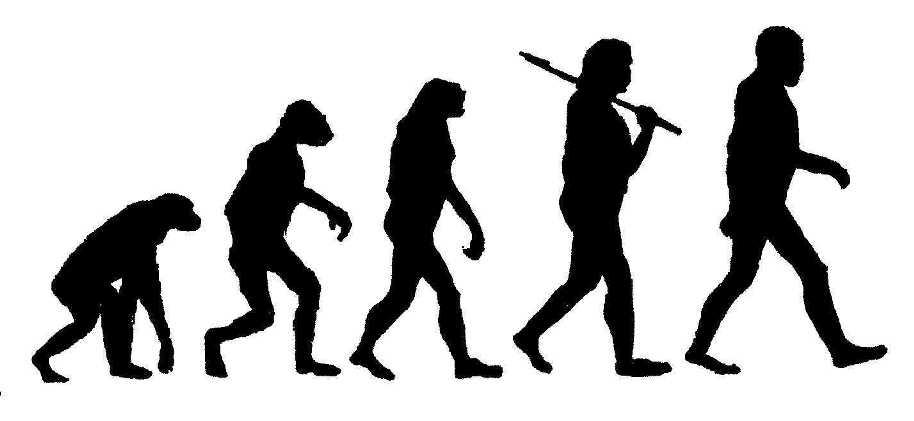 human-evolution.jpg