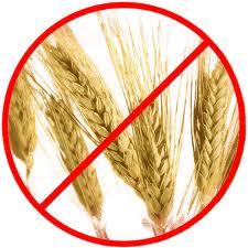 grain-free-diet.jpg