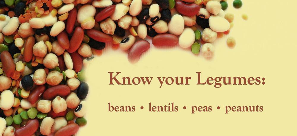 list-of-legumes.jpg