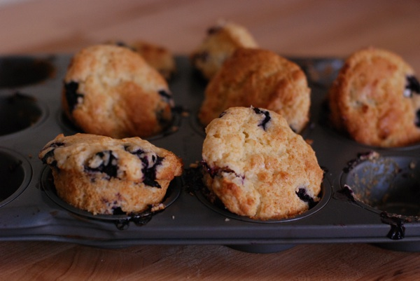 blueberry muffins 6