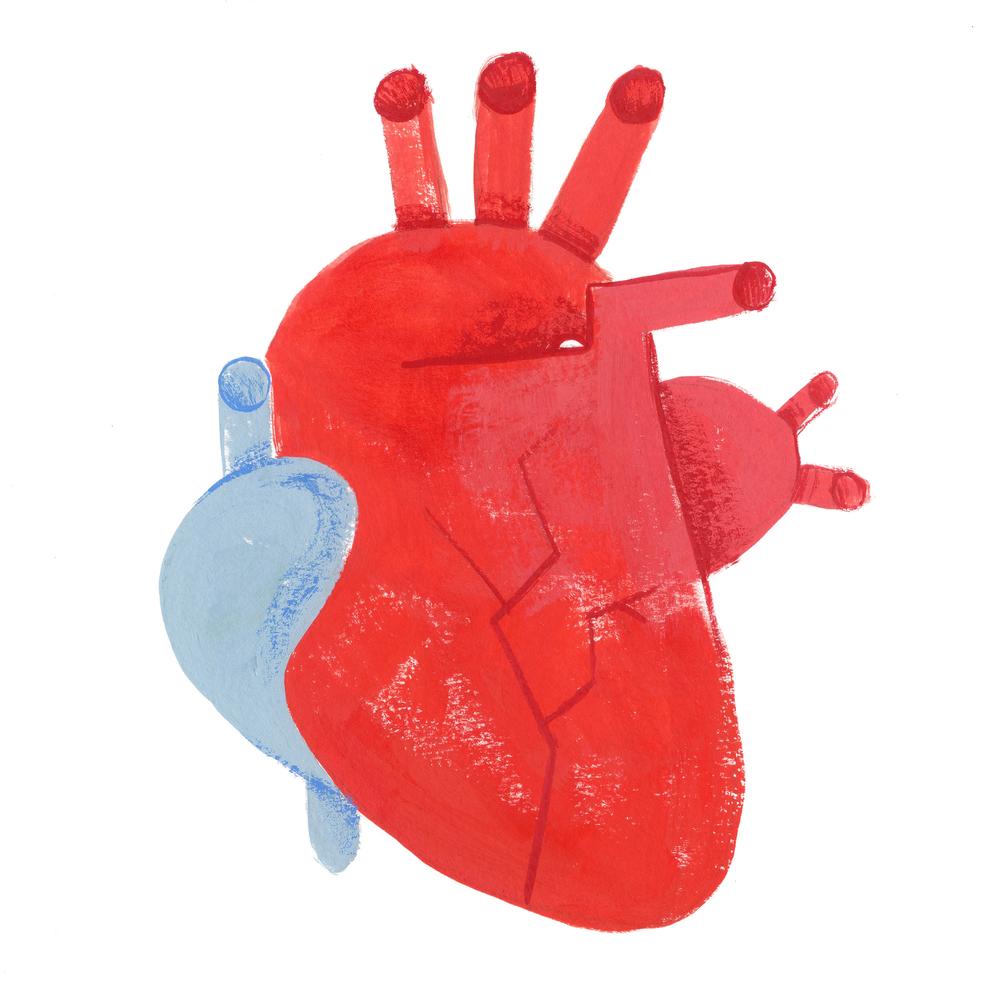 heart001 copy.jpg
