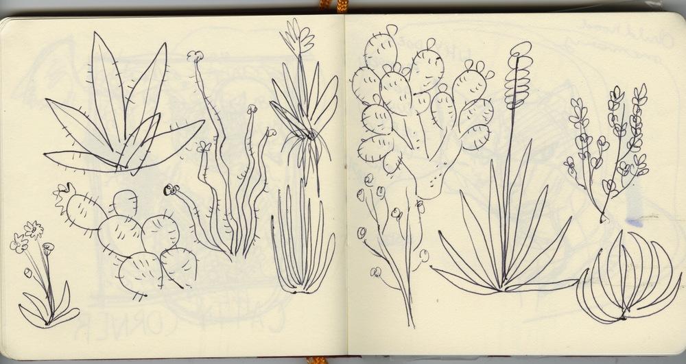sketchbook 7.jpeg