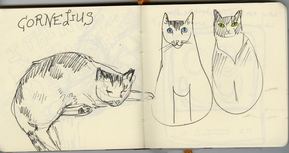 sketchbook 8.jpeg