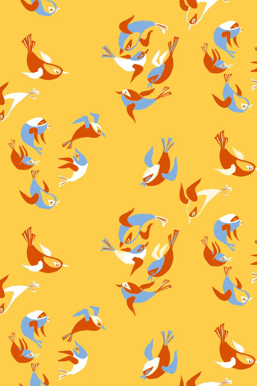 Birds DISPLAY CUT.jpg