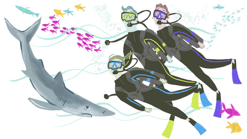 Scuba Dive Shark copy.jpg