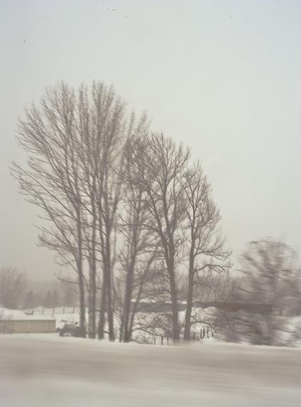 WinterWonderland_8.JPG