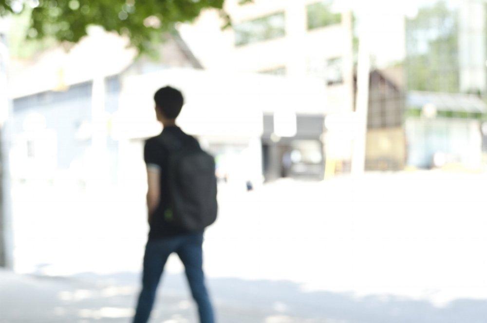 Summer Stroll (2016)