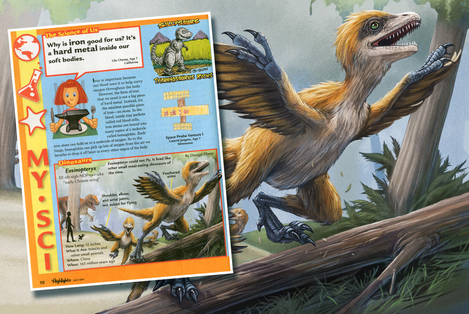 My illustration of Eosinopteryx that appeared in Highlights magazine.