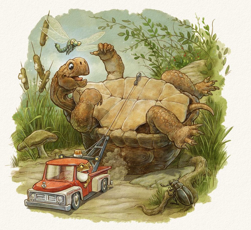 turtle_towtoad_web.jpg