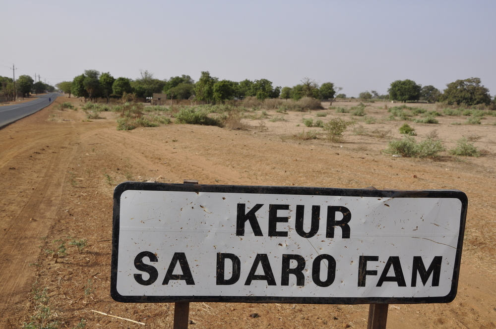 Cultural Exchange inKeur Sadaro, Senegal