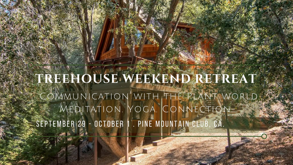 Treehouse Weekend Retreat