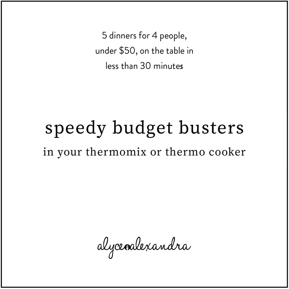 budget busters ebook printable.jpg